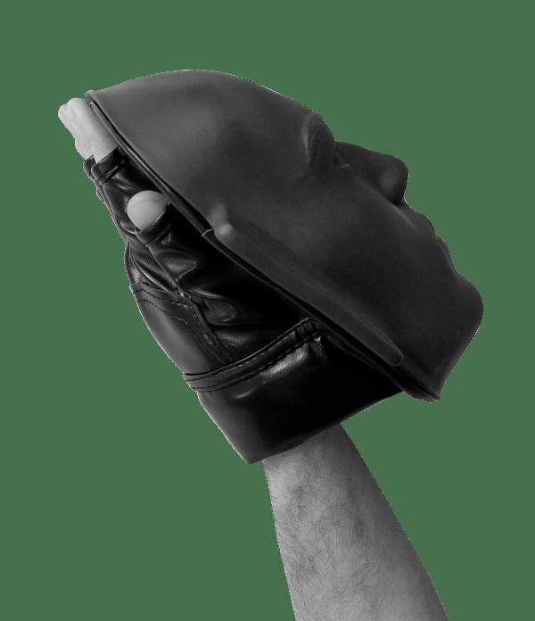 лапа бокс лицо